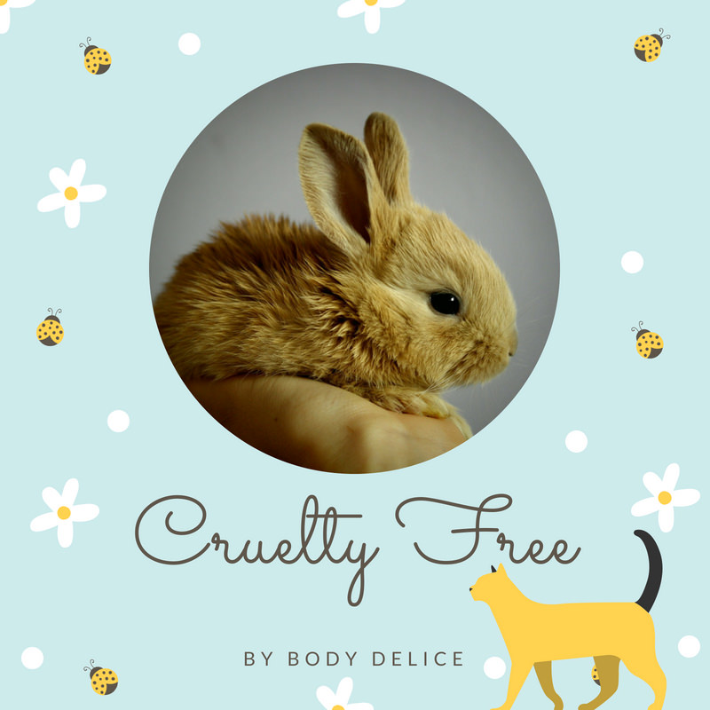 cruelty free image article