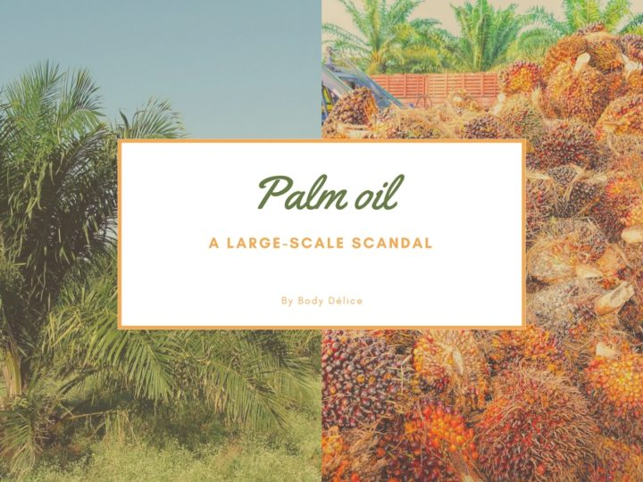 Palm Oil : a large-scale scandal